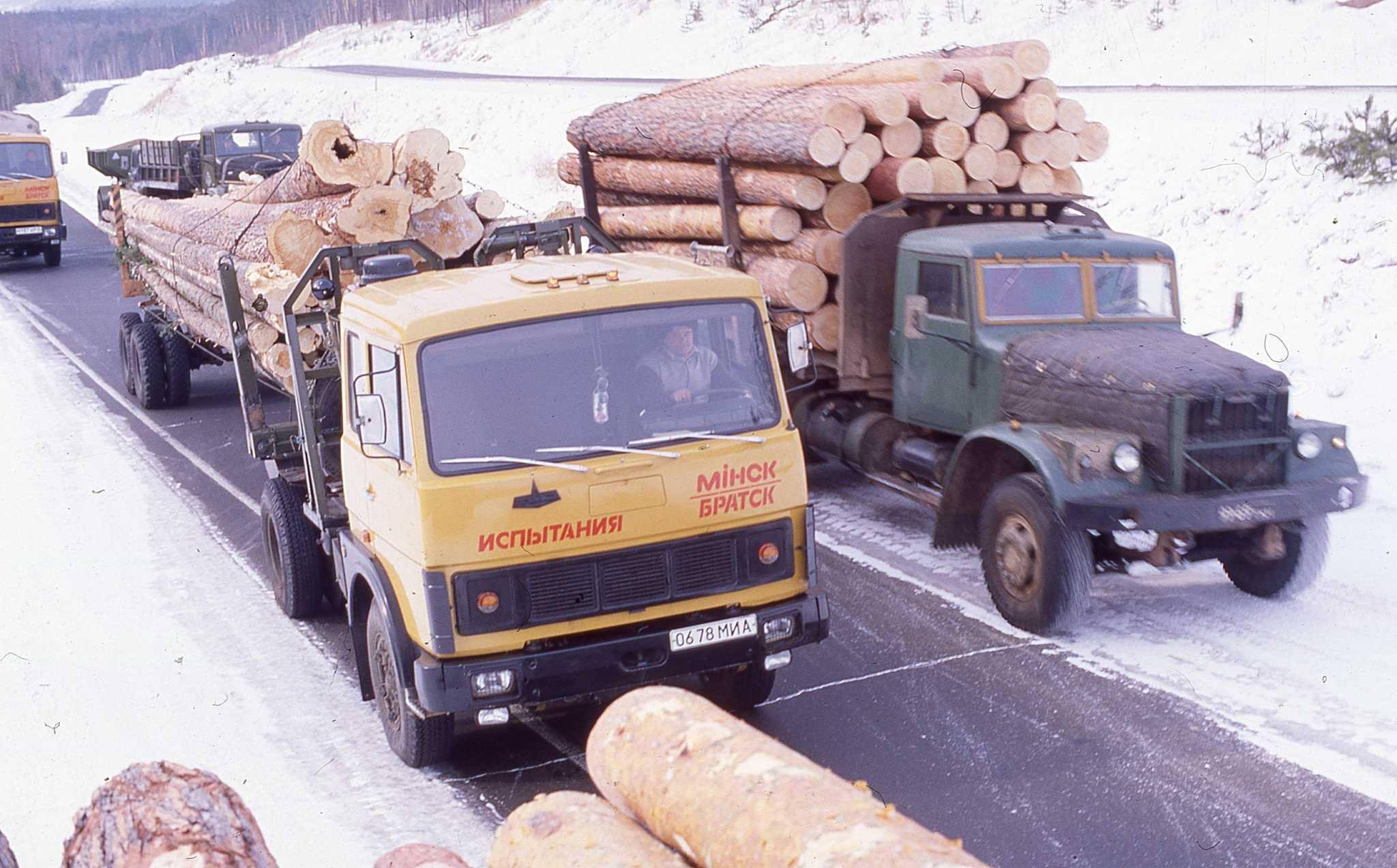bomen-transport--2