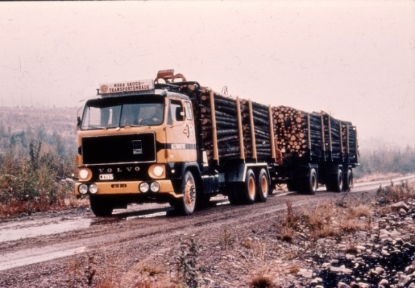 bomen-transport--3