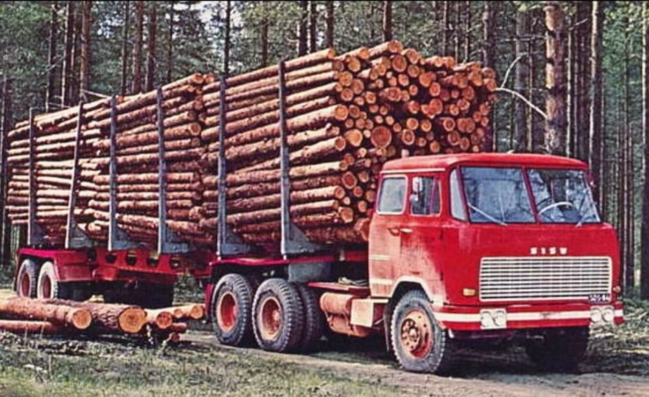 bomen-transport--4