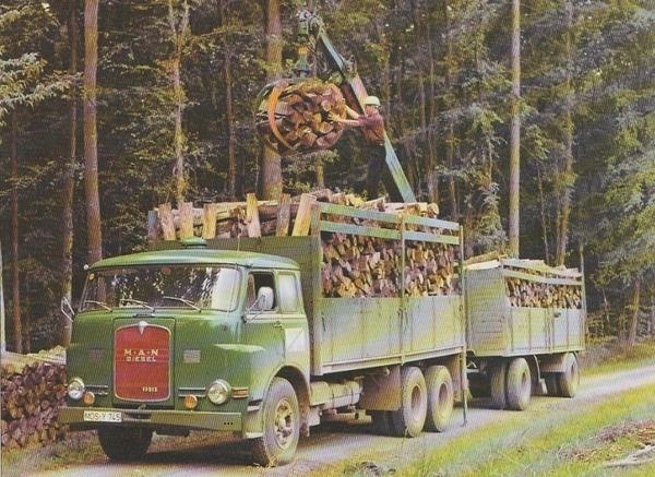bomen-transport--5