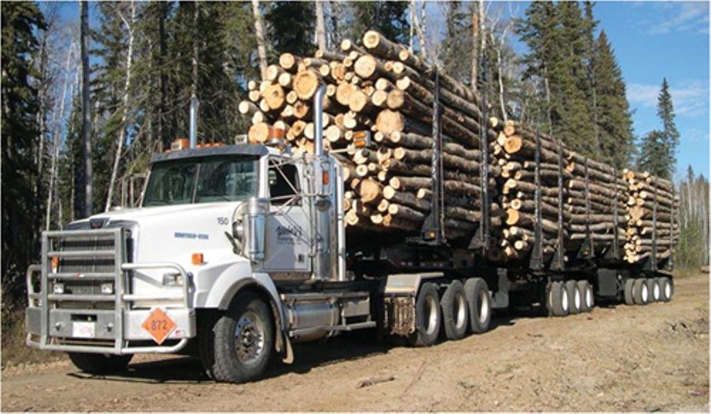 Australie-bomen-transport-(2)
