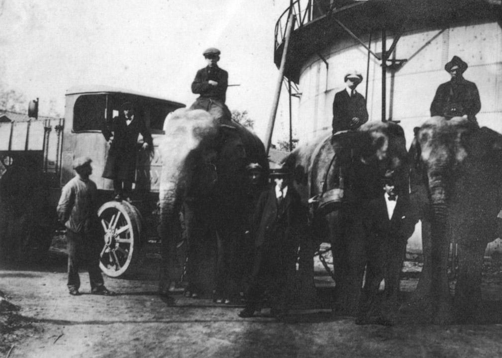 bij-de-bouw-van-het-openluchtstation-in-Wittevrouwenveld-kregen-we-hulp-van-het-reizend-circus-1930