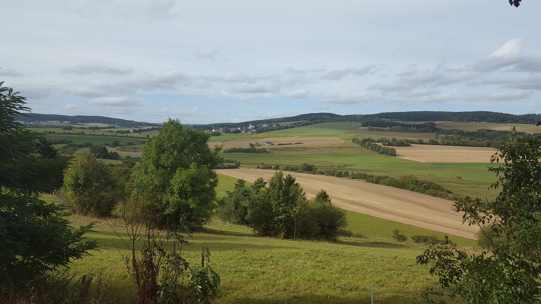 Willy-Hounjet-Wallersheim-Eifel---(3)
