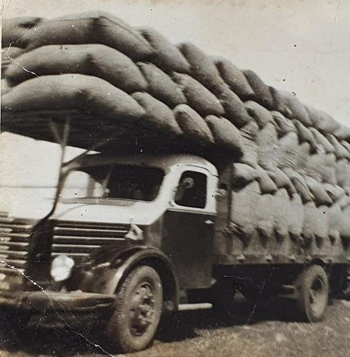 Krupp--Harm-Bakker-foto