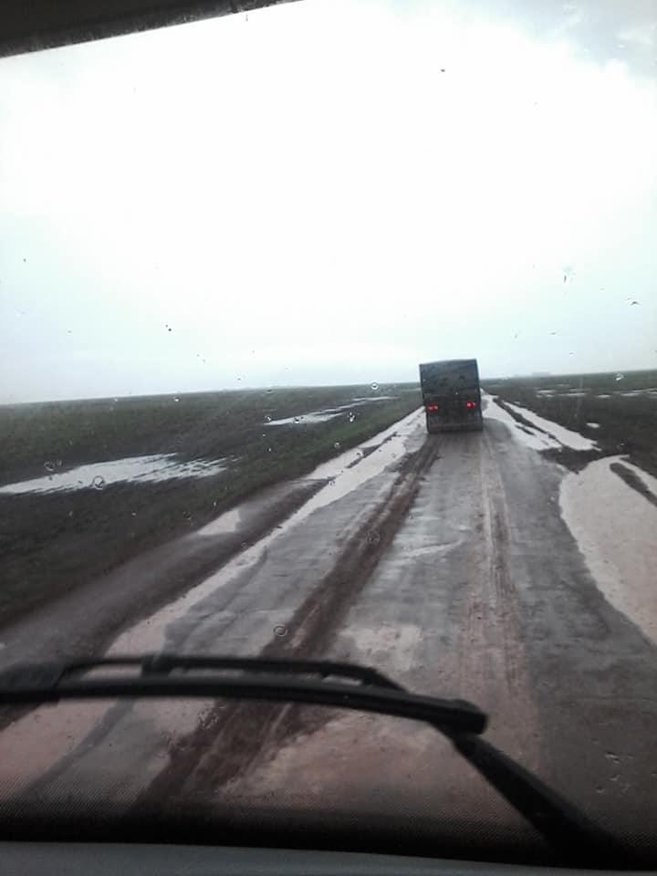 Regen-of-chuva--(2)
