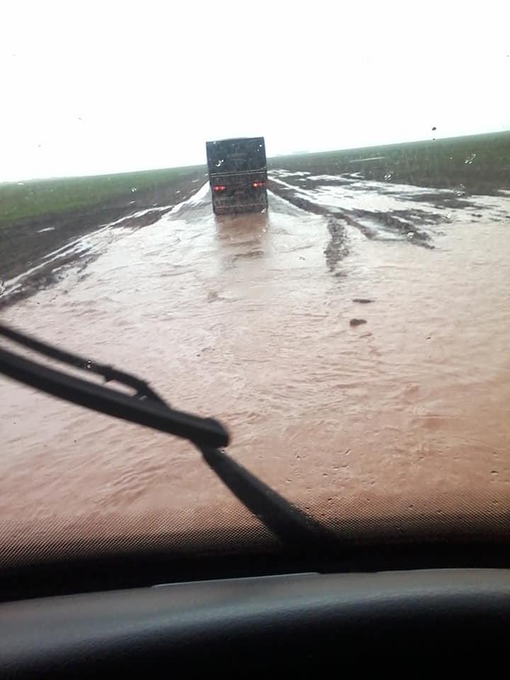 Regen-of-chuva--(4)
