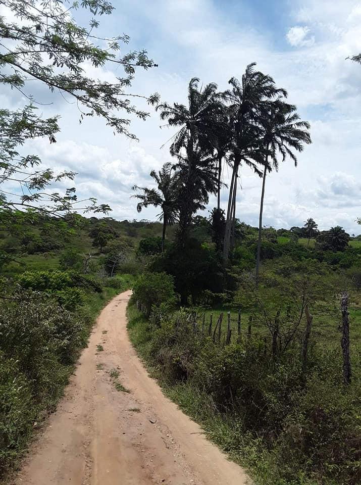Omgeving-Ibitiara--(23)