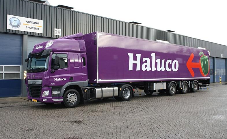 Haluco-02-groot