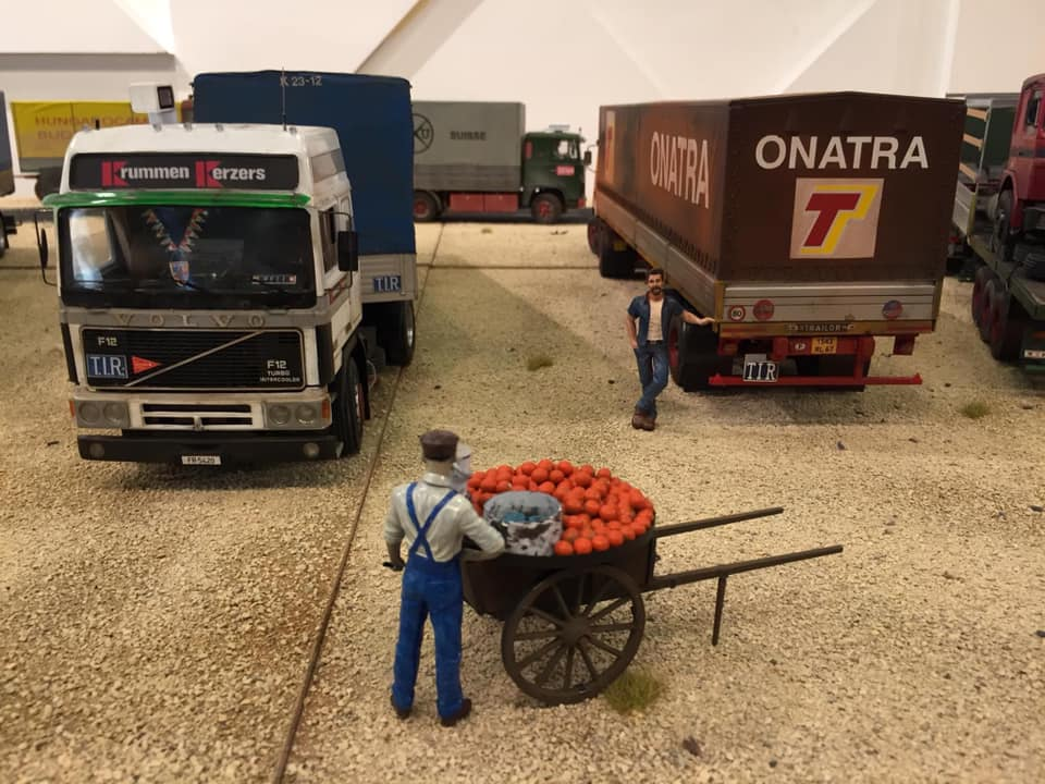 Modellbau-Truck-(24)