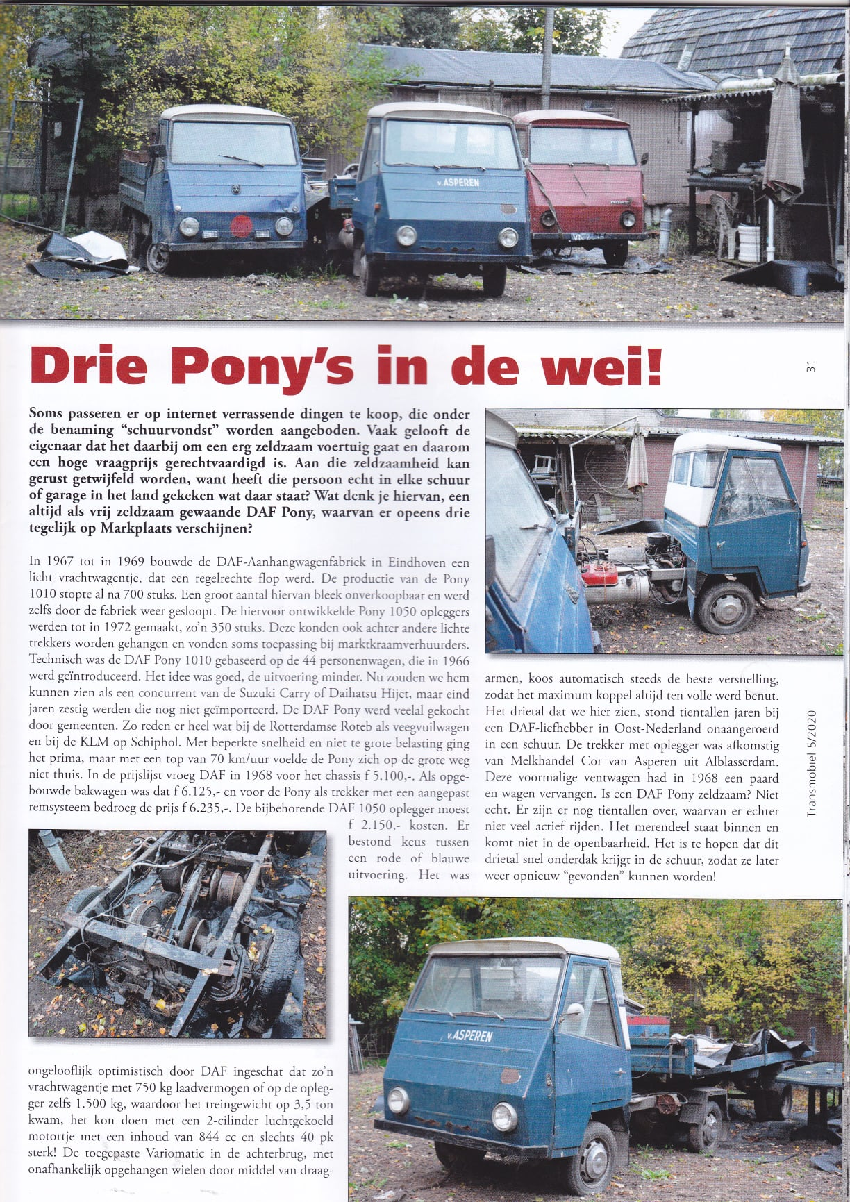 3-pony-s-in-de-wei-