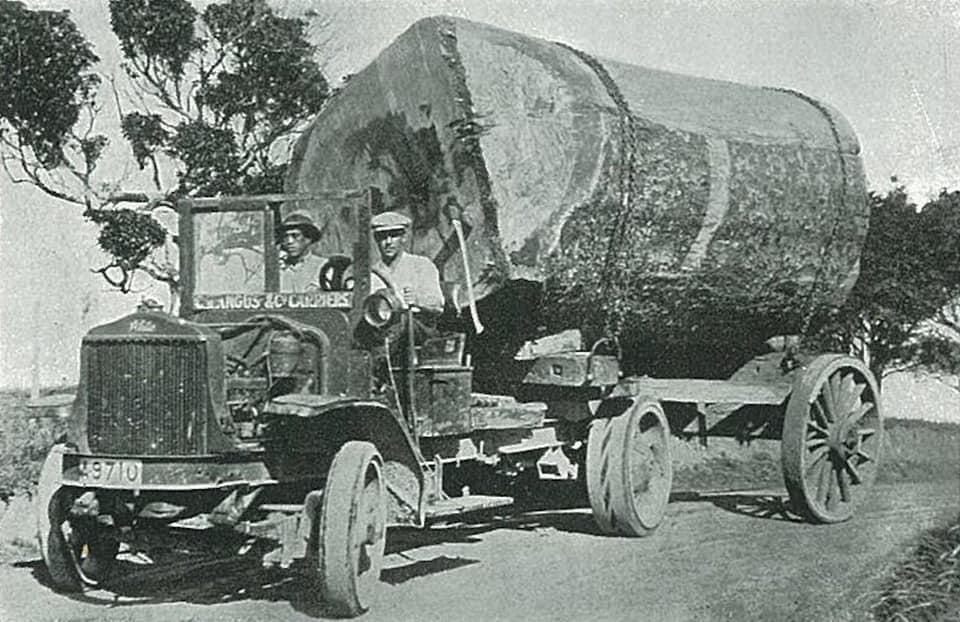 houttransport-van-het-verleden-en-heden--Uranus-De-Vialine--archive--(10)