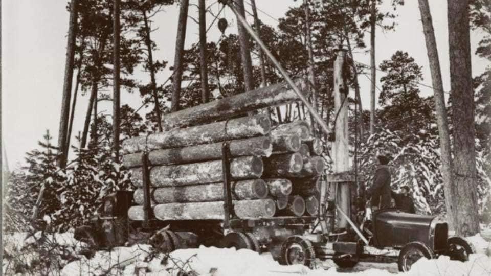 houttransport-van-het-verleden-en-heden--Uranus-De-Vialine--archive--(11)