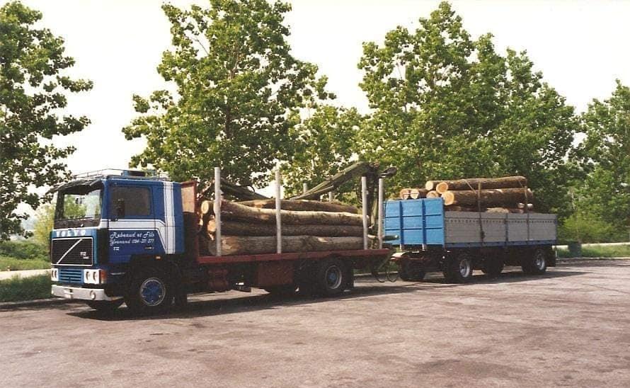 houttransport-van-het-verleden-en-heden--Uranus-De-Vialine--archive--(14)