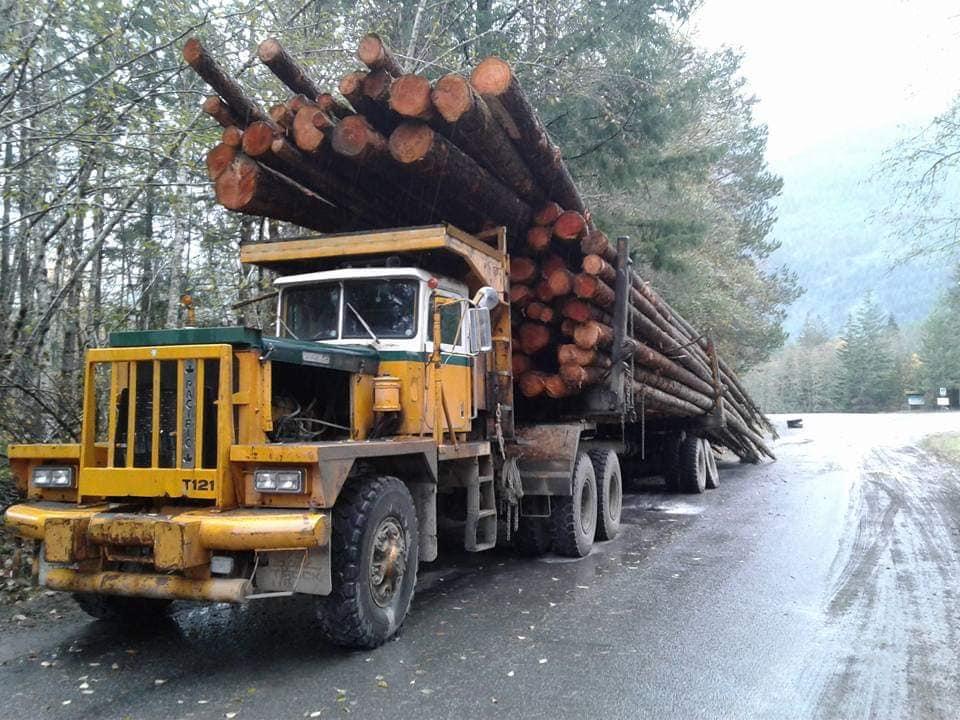 houttransport-van-het-verleden-en-heden--Uranus-De-Vialine--archive--(3)