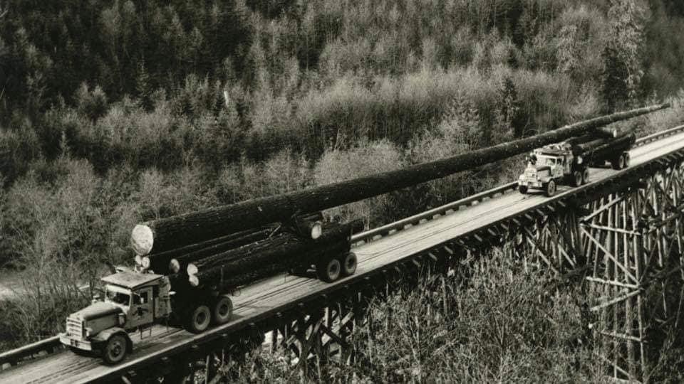 houttransport-van-het-verleden-en-heden--Uranus-De-Vialine--archive--(4)