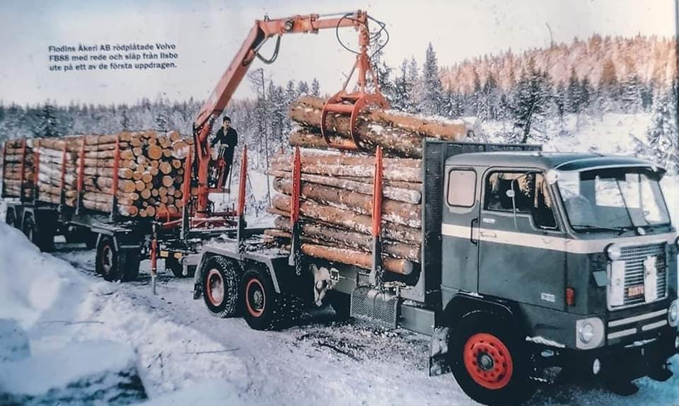 houttransport-van-het-verleden-en-heden--Uranus-De-Vialine--archive--(5)