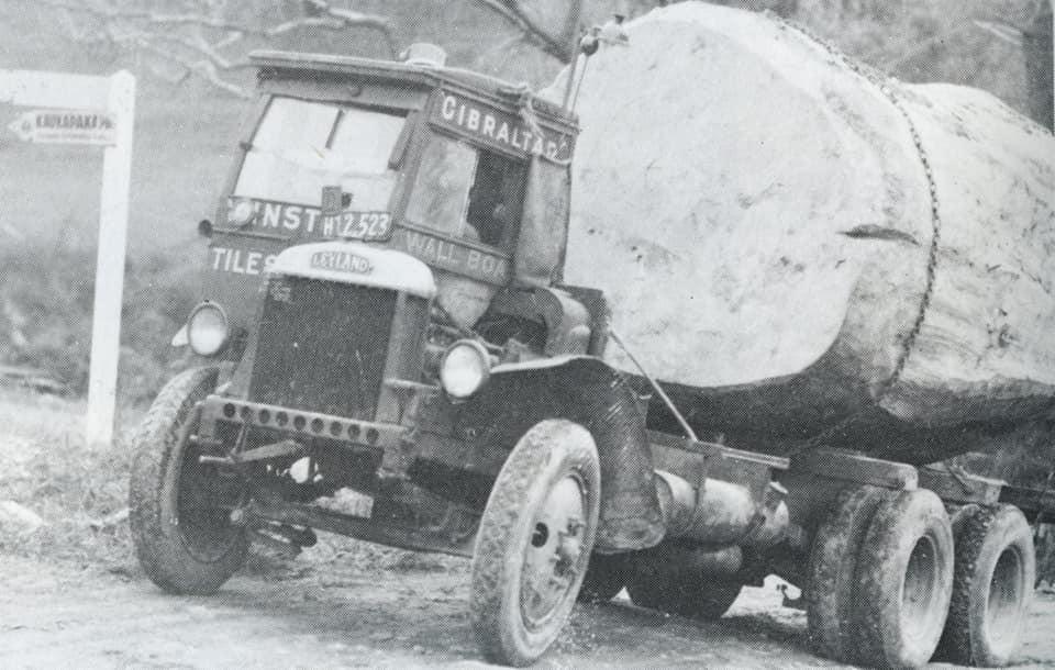 houttransport-van-het-verleden-en-heden--Uranus-De-Vialine--archive--(6)
