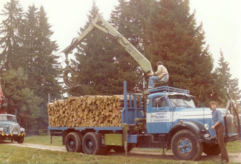 houttransport-van-het-verleden-en-heden--Uranus-De-Vialine--archive--(24)