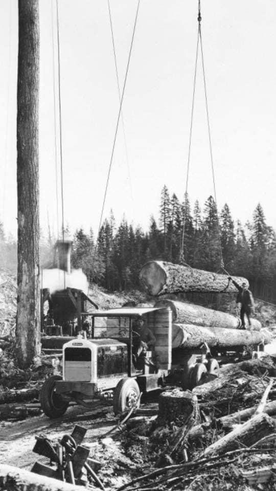 houttransport-van-het-verleden-en-heden--Uranus-De-Vialine--archive--(30)