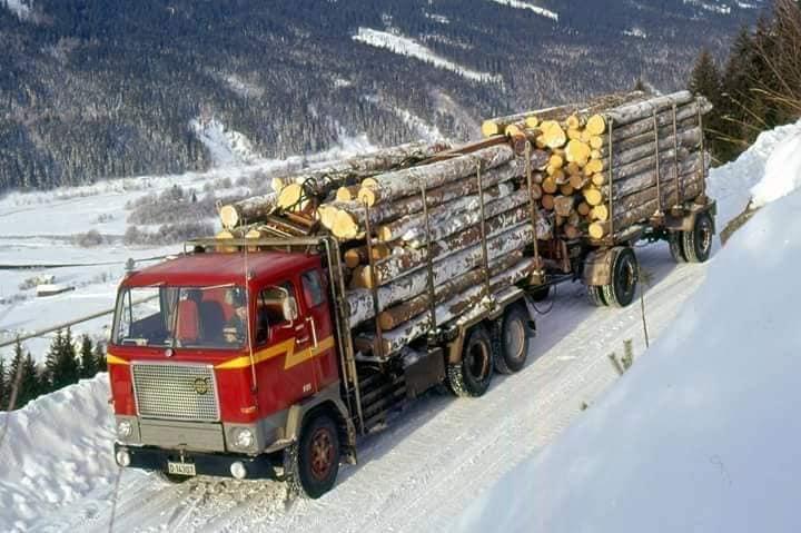 houttransport-van-het-verleden-en-heden--Uranus-De-Vialine--archive--(38)