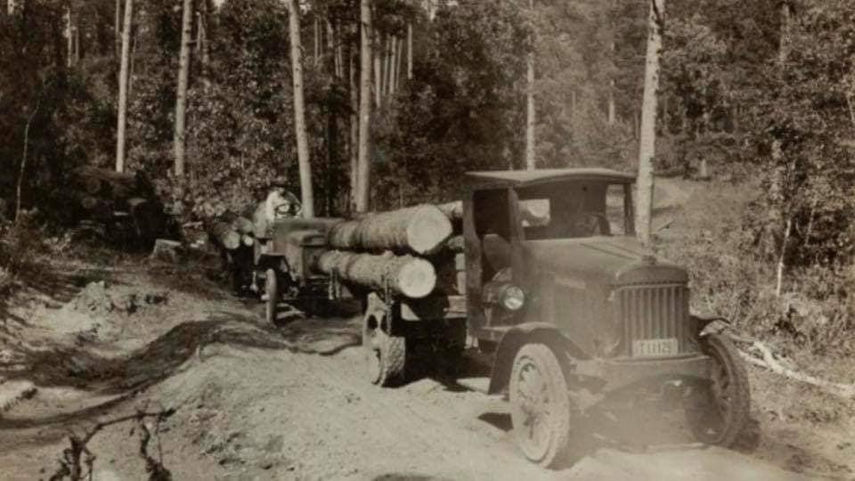 houttransport-van-het-verleden-en-heden--Uranus-De-Vialine--archive--(40)