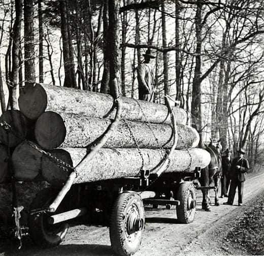 houttransport-van-het-verleden-en-heden--Uranus-De-Vialine--archive--(49)