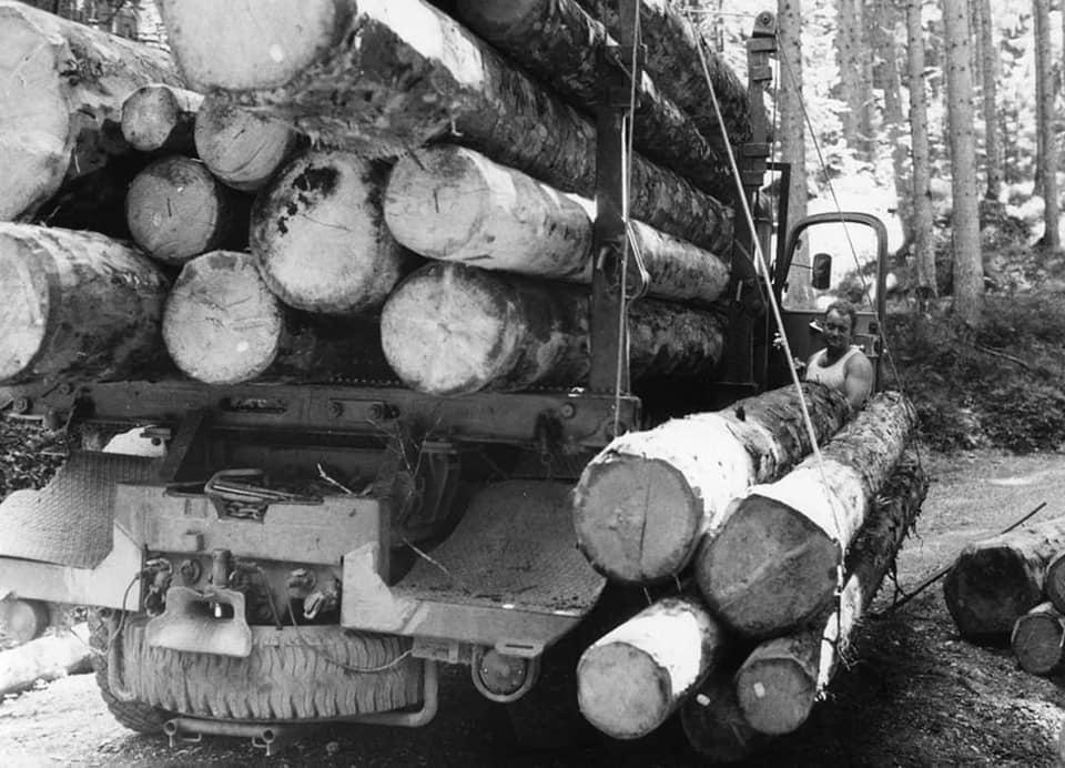 houttransport-van-het-verleden-en-heden--Uranus-De-Vialine--archive--(53)