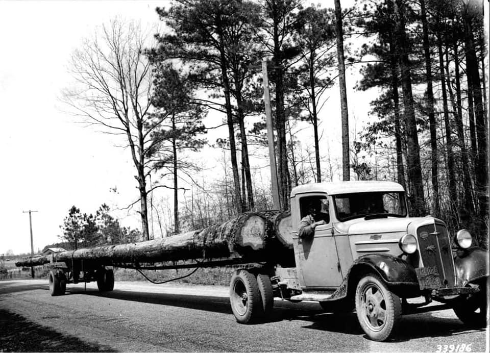 houttransport-van-het-verleden-en-heden--Uranus-De-Vialine--archive--(57)
