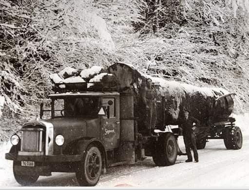 houttransport-van-het-verleden-en-heden--Uranus-De-Vialine--archive--(58)