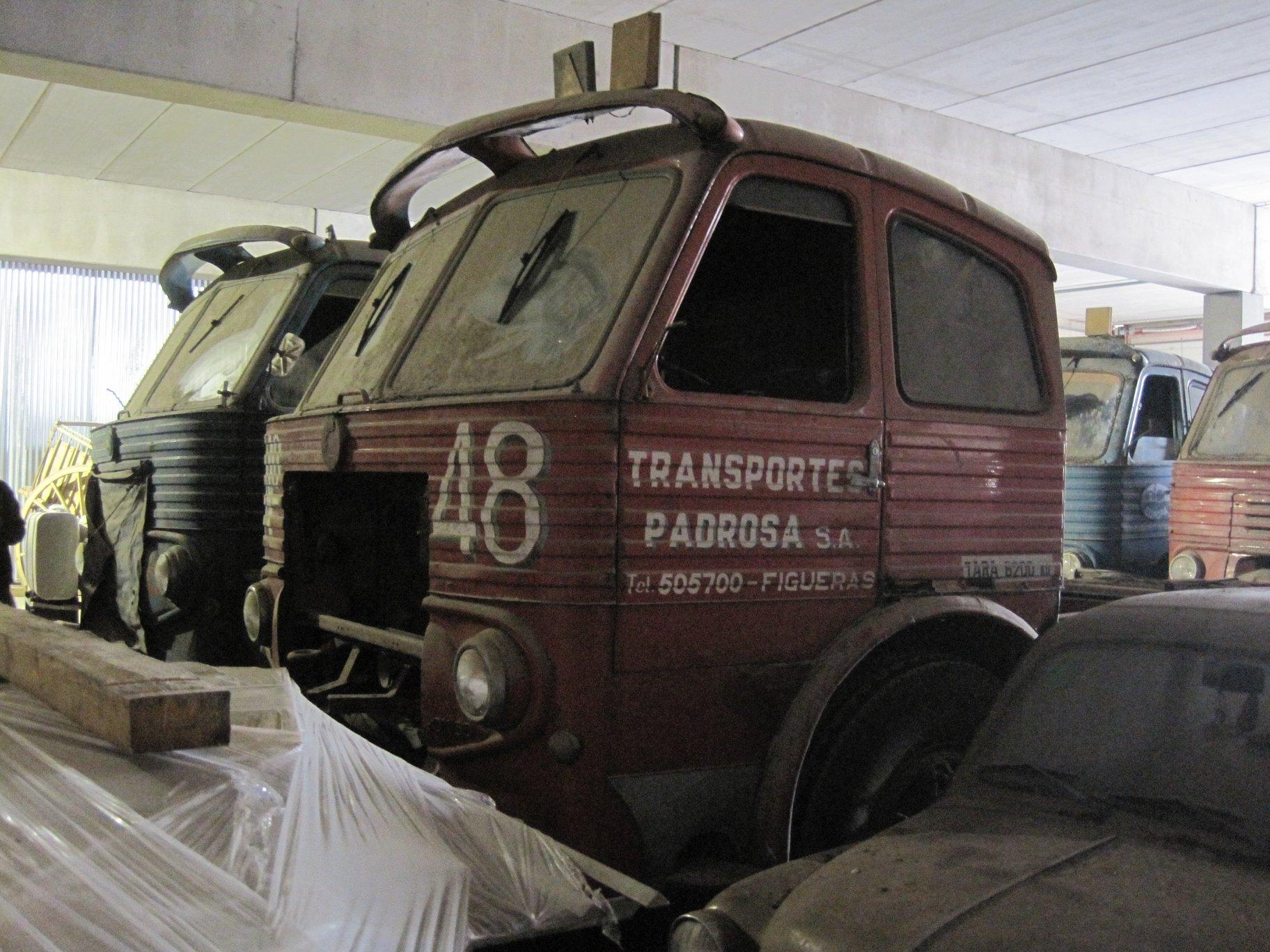 Pegaso-nr-48-