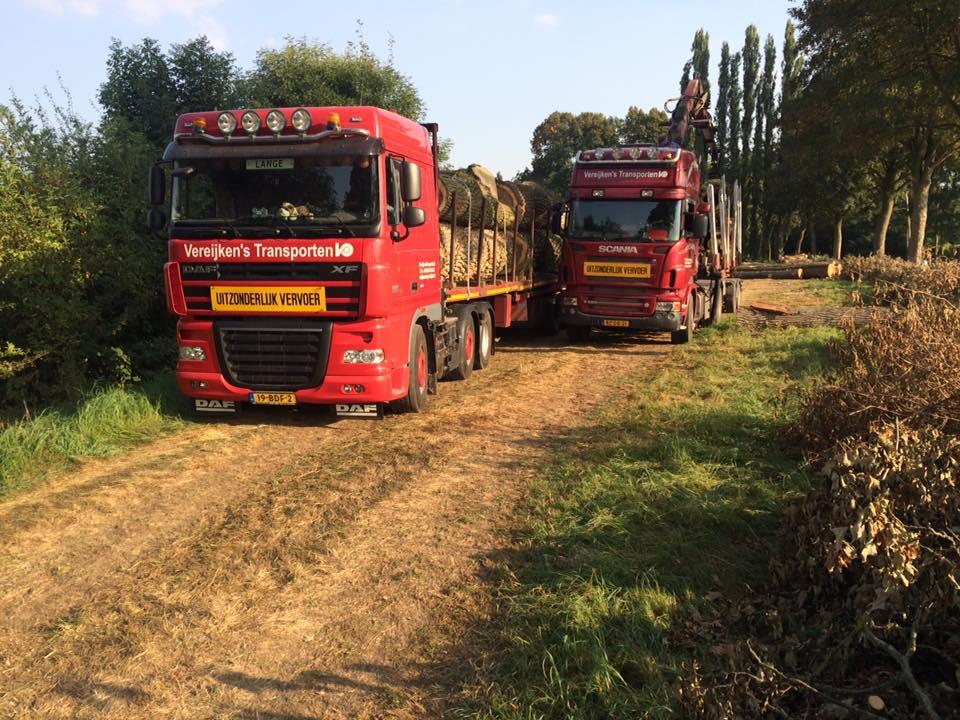 DAF-Scania-2016-(1)