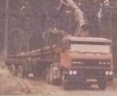 daf-6X4-(5)