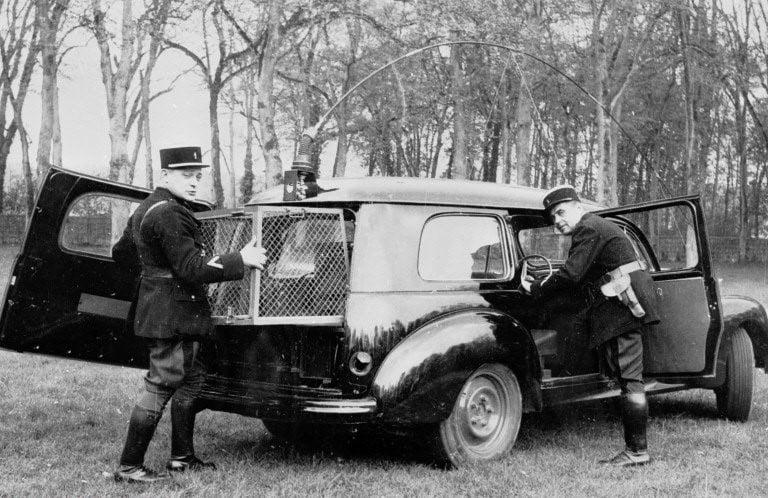 Peugeot-203-voor-honden-transport-