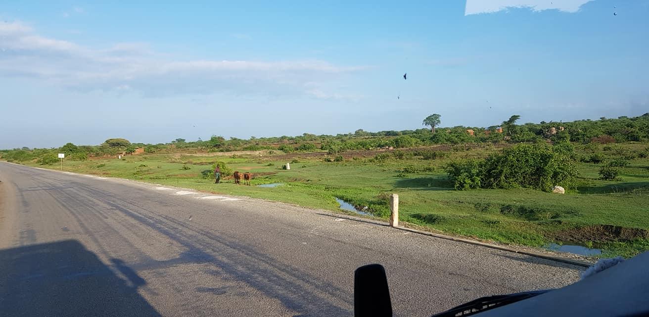dag-2-Dar-es-Salaam-Kamplae-Els-Hondius-met-Mkhaleedy-Mwanja--6-12-20-(33)