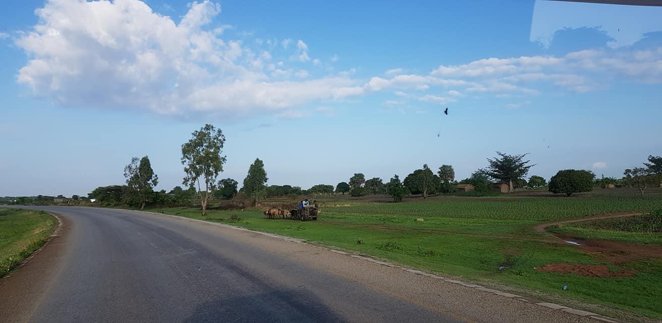 dag-2-Dar-es-Salaam-Kamplae-Els-Hondius-met-Mkhaleedy-Mwanja--6-12-20-(42)
