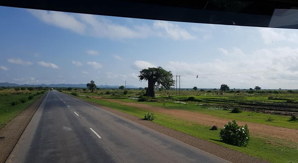 dag-2-Dar-es-Salaam-Kamplae-Els-Hondius-met-Mkhaleedy-Mwanja--6-12-20-(57)