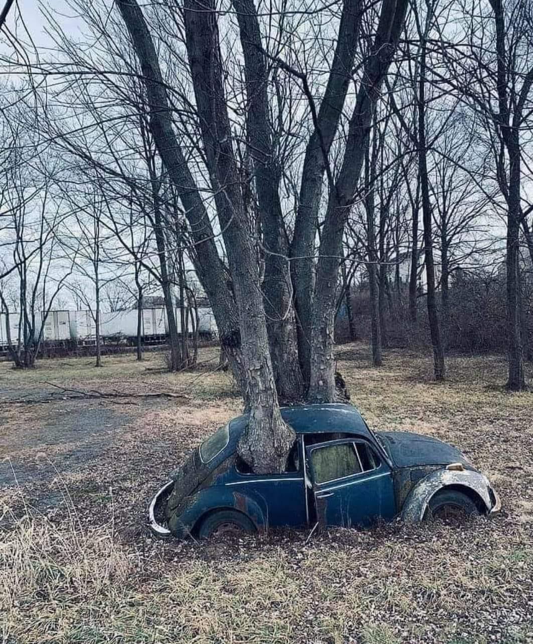 VW-Boom-kever