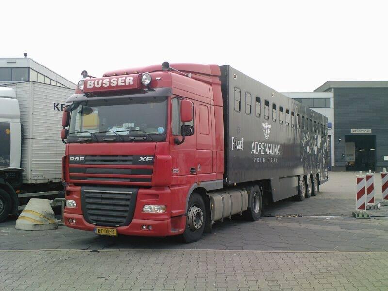DAF-XF--Paarden-trailer