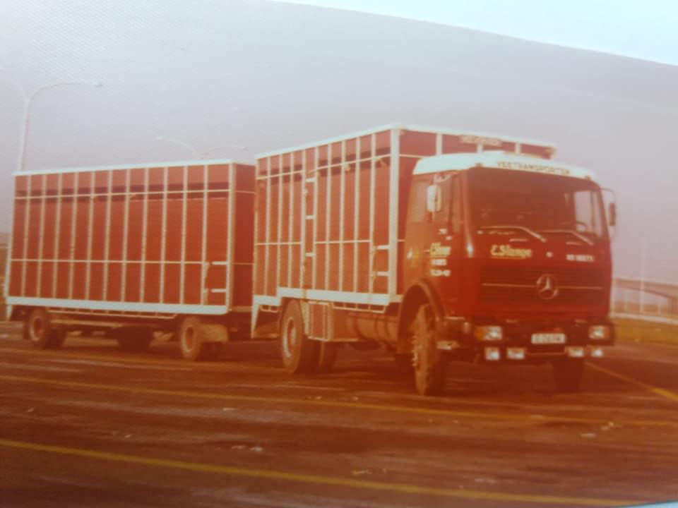 Import-van-de-eerste-Frisian-Holstein-vaarzen-vanuit-Canada-per-vliegtuig-naar-Brussels-Airport-Geimporteerd-door-de-fa-Nijdam-en-de-Groot-uit-Tirns-en-gedistribueerd-naar-boeren-in-Nederland-1975-(4)
