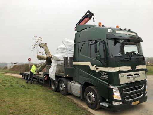 Volvo-met-bomen-transport