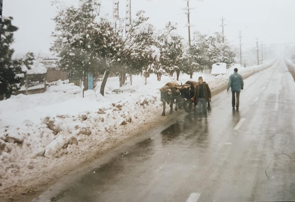 Chauffeur-Van-Beek-archief-zoon-Berry--Mijn-GROTE-voorbeeld-op-zijn-avonturen-naar-Griekenland-een-aantal-jaren-geleden--Hou-je-taai-Pa-zie-je-gauw-weer---(12)