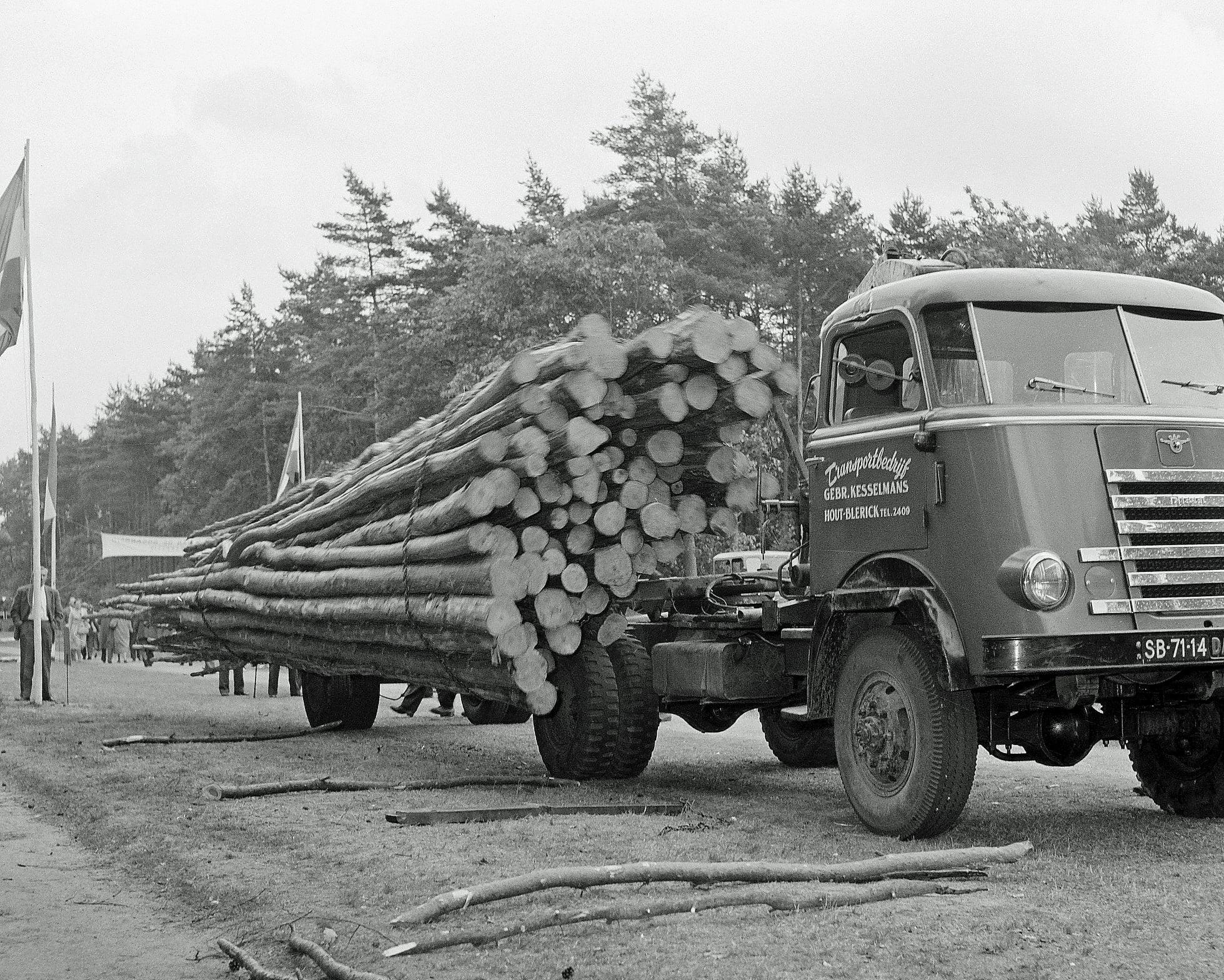 hout-lossen