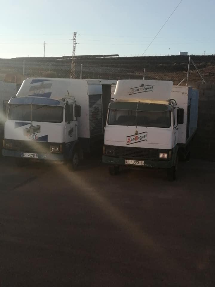 Ebro--canine-Mercedes--8-13-(2)