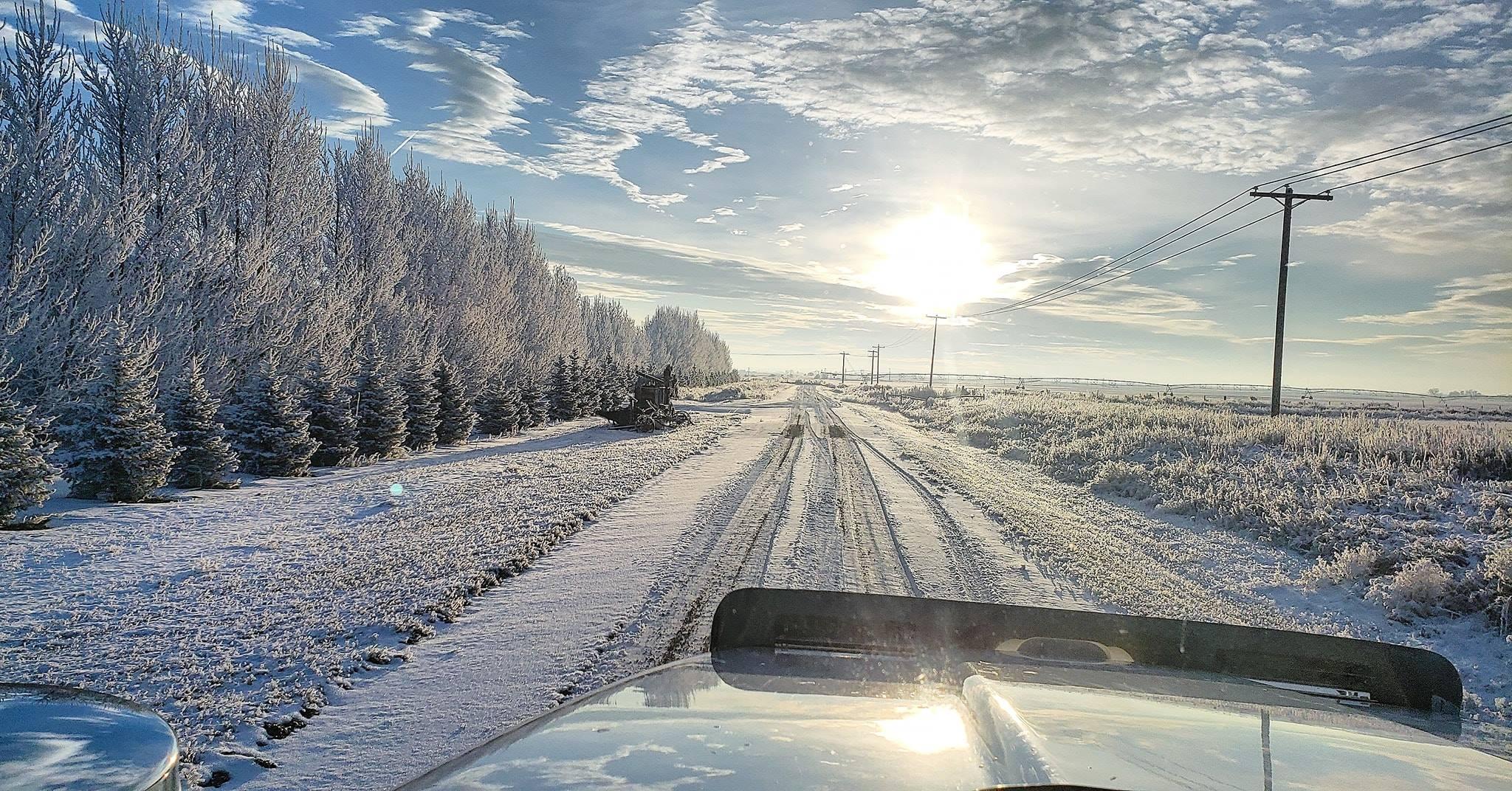 26-11-2021-Winter-op-zijn-mooiste-manier-Betoverend---(5)