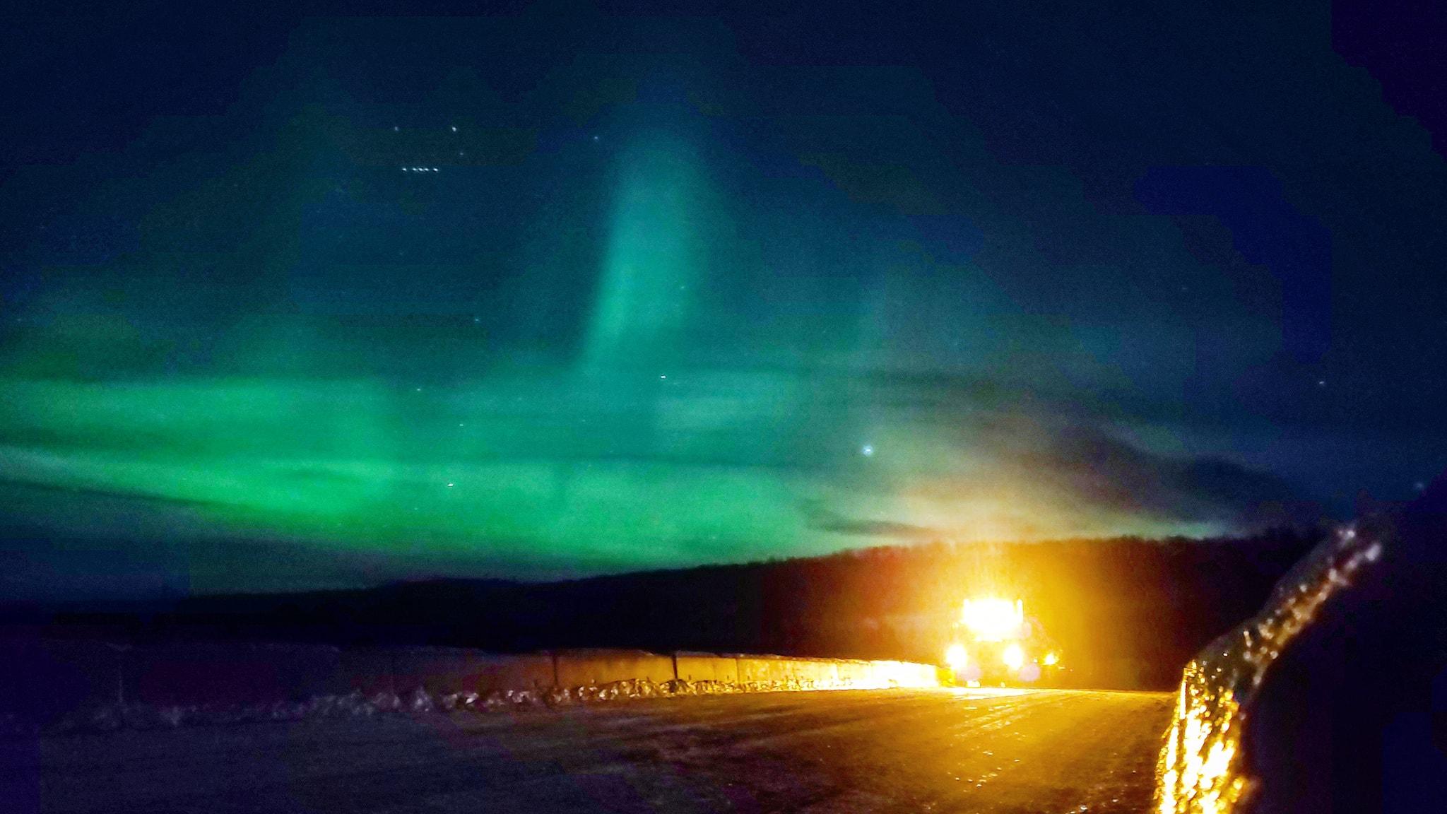 The--Alaska-Highway-19-1-2021--(4)