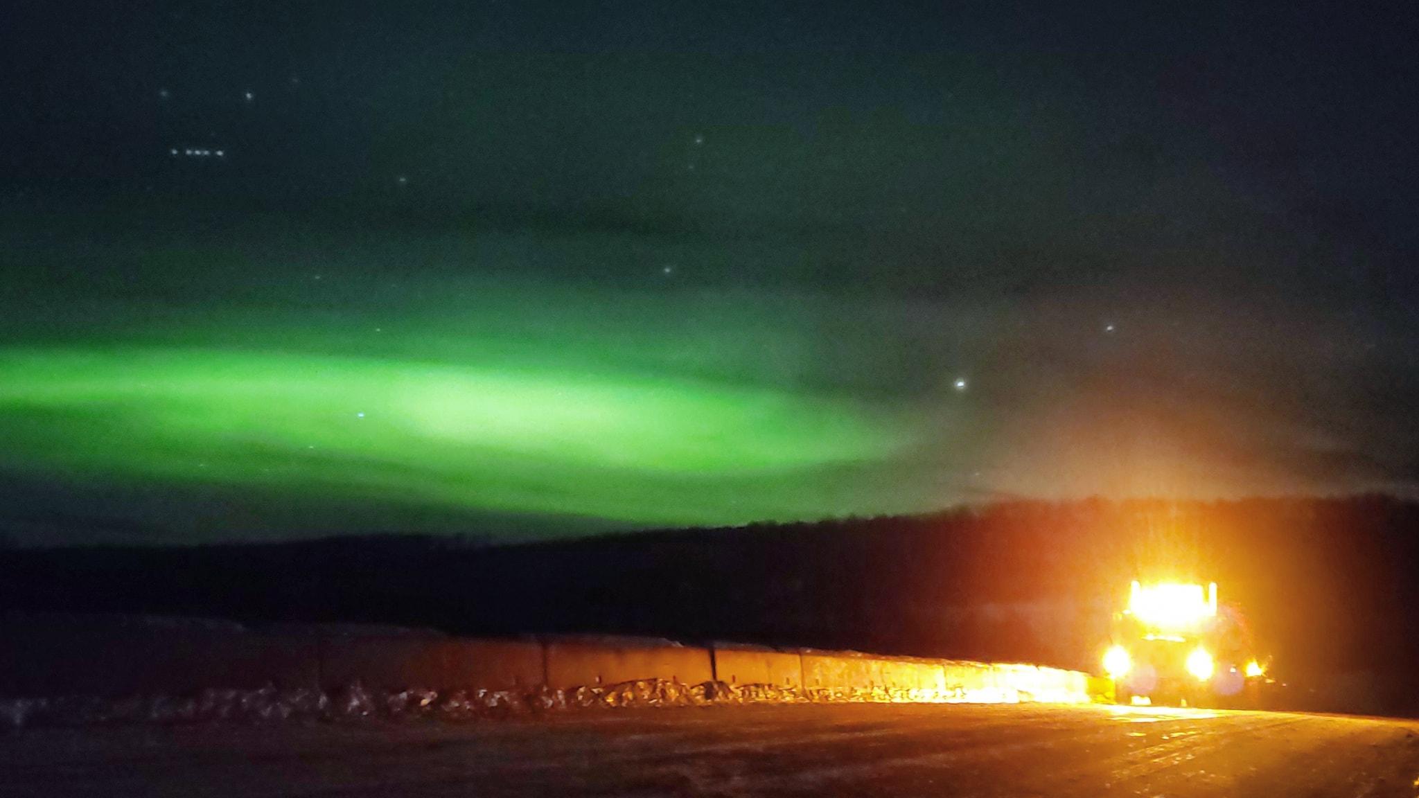 The--Alaska-Highway-19-1-2021--(5)