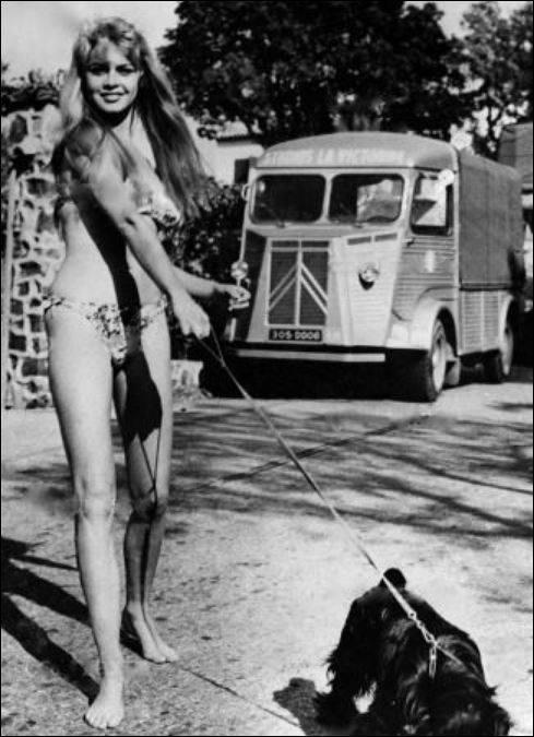 Citroen-HY-en-Brigitte-Bardot