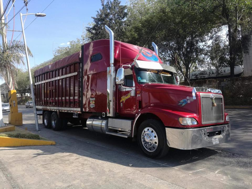 Torton-de-todo-Mexico-119