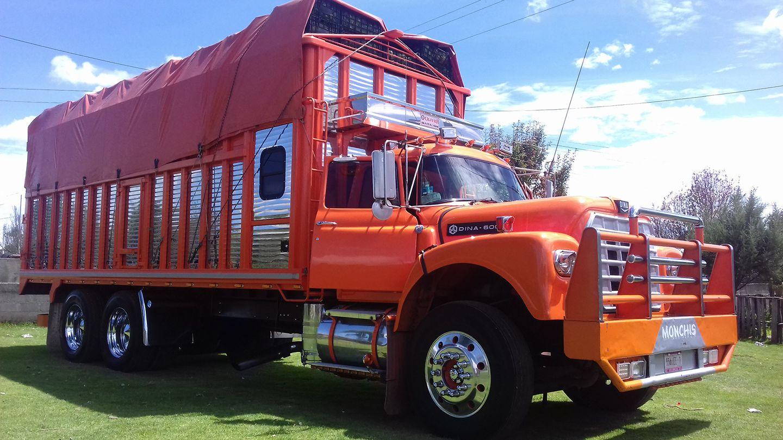 Camiones-Mexico-18