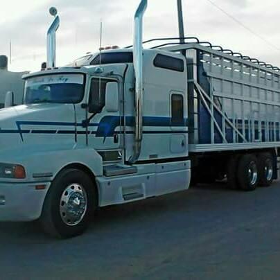 Camiones-Mexico-2